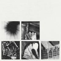 Shit Mirror Nine Inch Nails