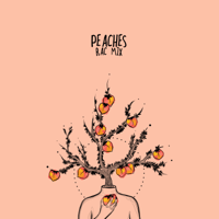 Peaches (RAC Mix) CRAY & RAC MP3