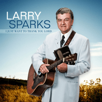 I Just Want to Thank You Lord Larry Sparks MP3