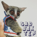 Free Download Sad Baxter Baby Mp3