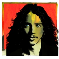 Sunshower Chris Cornell