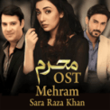 Free Download Sara Raza Khan Na Mehram Humsafar (From