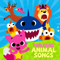 Free Download Pinkfong Baby Shark Mp3