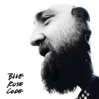 Acquainted with the Night Blue Rose Code