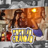 Popotão Grandão Mc Neguinho do ITR MP3