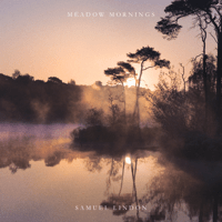 Meadow Mornings Samuel Lindon