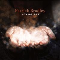 Out of Bounds Patrick Bradley