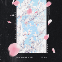 Lost in Japan (Remix) Shawn Mendes & Zedd
