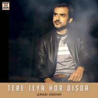 Tere Jeya Hor Disda Junaid Asghar MP3