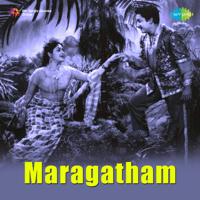 Kunguma Poove J. P. Chandrababu & Jamuna Rani