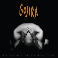 Clone GOJIRA