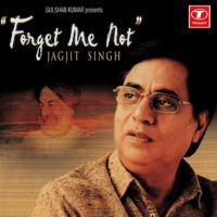 Teri Berukhi Jagjit Singh MP3