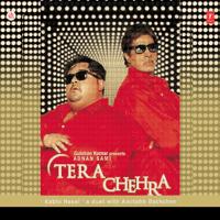 Kabhi Naee Adnan Sami & Amitabh Bachchan