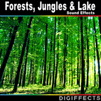 Forest Ambience with Birds Digiffects Sound Effects Library