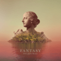 Free Download Alina Baraz & Galimatias Fantasy (Felix Jaehn Remix) Mp3