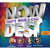 Bebo Yo Yo Honey Singh & Alfaaz