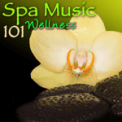 Free Download Spa Tranquility (Relaxing Music) Mp3
