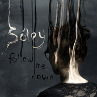 Follow Me Down Sóley MP3