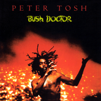 Pick Myself Up (2002 Remaster) Peter Tosh MP3