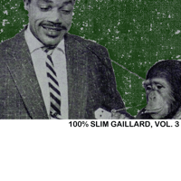 Potato Chips Slim Gaillard