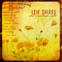 What a Wonderful World Leif Shires MP3