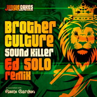 Sound Killer (Ed Solo Remix) Brother Culture MP3