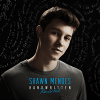 Stitches Shawn Mendes MP3