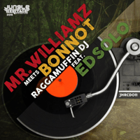 Raggamuffin DJ (feat. Ed Solo) Mr Williamz & Bonnot