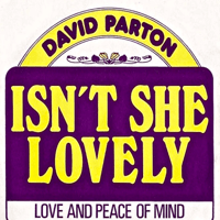 Isn't She Lovely David Parton MP3