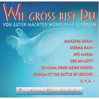 Wie gross bist du Coro Crescendo & Chor Hegnau MP3