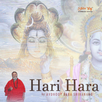 ShivYog Chants Hari Hara Avdhoot Baba Shivanand