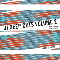 Stressed DJ Deep MP3