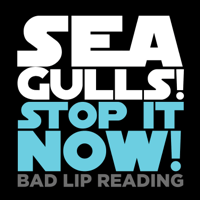Seagulls! (Stop It Now) Bad Lip Reading MP3