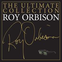Mean Woman Blues Roy Orbison
