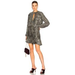 Small Crop Of Silver Sequin Dress