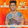 Free Download Dj Norie Hot in the Streets Mp3