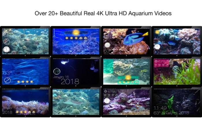 4_Aquarium_4K_Live_Wallpaper.jpg