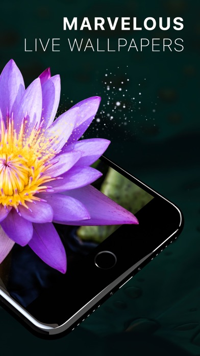 Live Wallpapers - Moving Backgrounds HD   App Report on Mobile Action