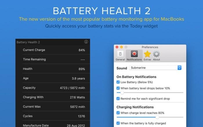 4_Battery_Health_2_Stats_Info.jpg