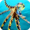 M Abid Farooq - Under Water Octopus Hunt Pro - Sea Creature Hunt Simulator アートワーク
