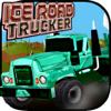 Syeda Kausar fatima - Ice Road Trucker アートワーク