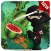 MUHAMMAD PARWANA - Real Ninja Fruit Cut 2016 アートワーク
