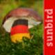 Pilzführer Deutschland - Pilze Sammeln, Bestimmen und Zubereiten, der Profi Pilzführer für Wald und Garten