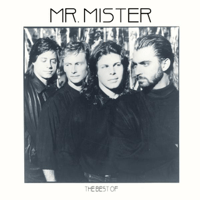 Broken Wings Mr. Mister