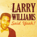 Free Download Larry Williams Bony Moronie Mp3