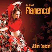 Concerto de Aranjuez Julian Salazar