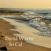 Hotel California David Wayne