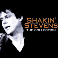 You Drive Me Crazy Shakin' Stevens