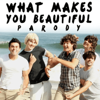 What Makes You Beautiful Parody Bart Baker MP3