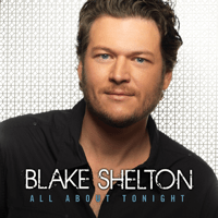 Who Are You When I'm Not Looking Blake Shelton song